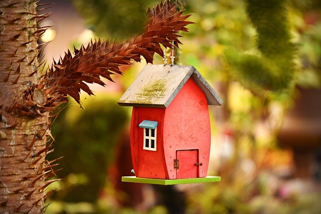 červená ptačí budka