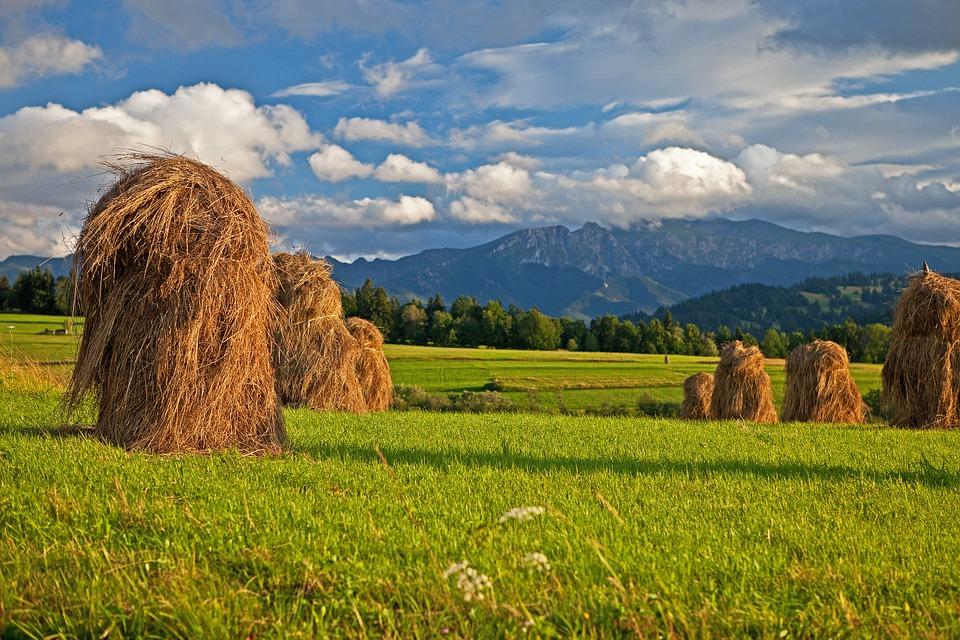 panorama Vysoké Tatry